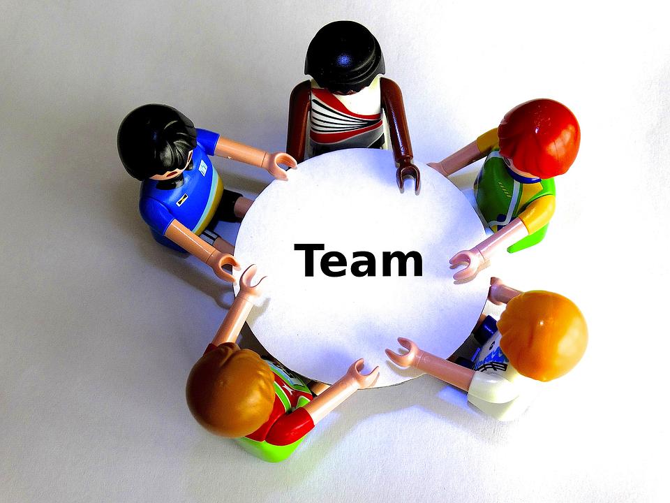 bim team search